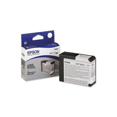 Epson T580 Light Black (80 ml)