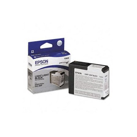 Epson T580 Light Light Black (80 ml)