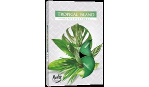 Vonná čajová svíčka Tropický ostrov 6ks v krabičce