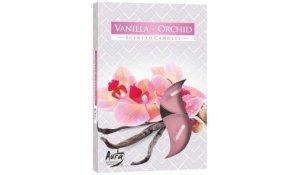 Vonná čajová svíčka Vanilla Orchid 6 ks v krabičce